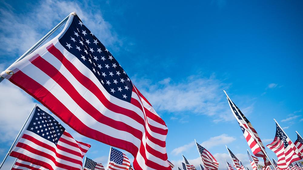 Free Printable Pictures of Veterans Day